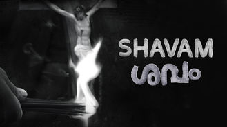 Netflix Box Art for Shavam