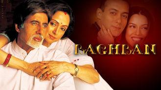 Netflix box art for Baghban