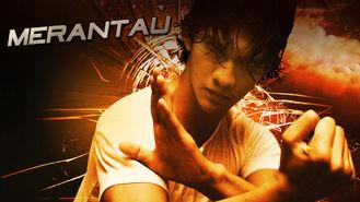 Netflix box art for Merantau