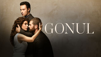 Netflix box art for Gonul - Season 1