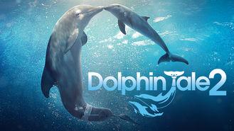 Netflix Box Art for Dolphin Tale 2