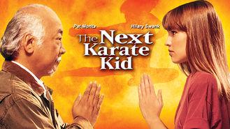 Netflix box art for The Next Karate Kid