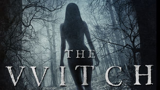 Netflix Box Art for Witch, The