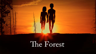 Netflix box art for The Forest