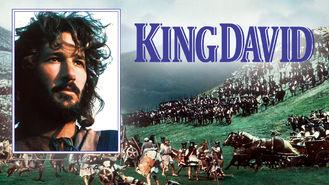 Netflix box art for King David