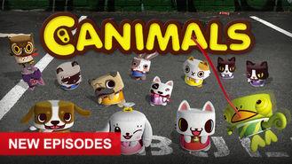 Netflix box art for Canimals - Season 2