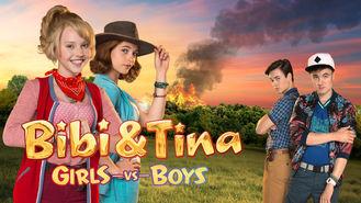 Netflix box art for Bibi & Tina: Girls Versus Boys