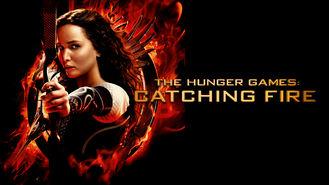 Netflix box art for The Hunger Games: Catching Fire