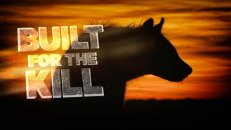 Netflix box art for Built for the Kill - Season 4