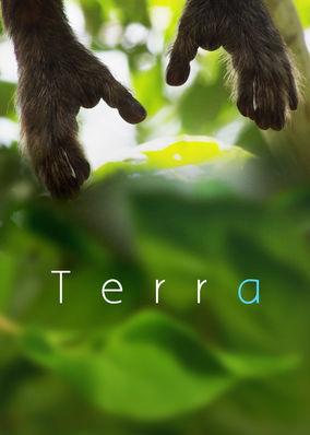 Box art for Terra